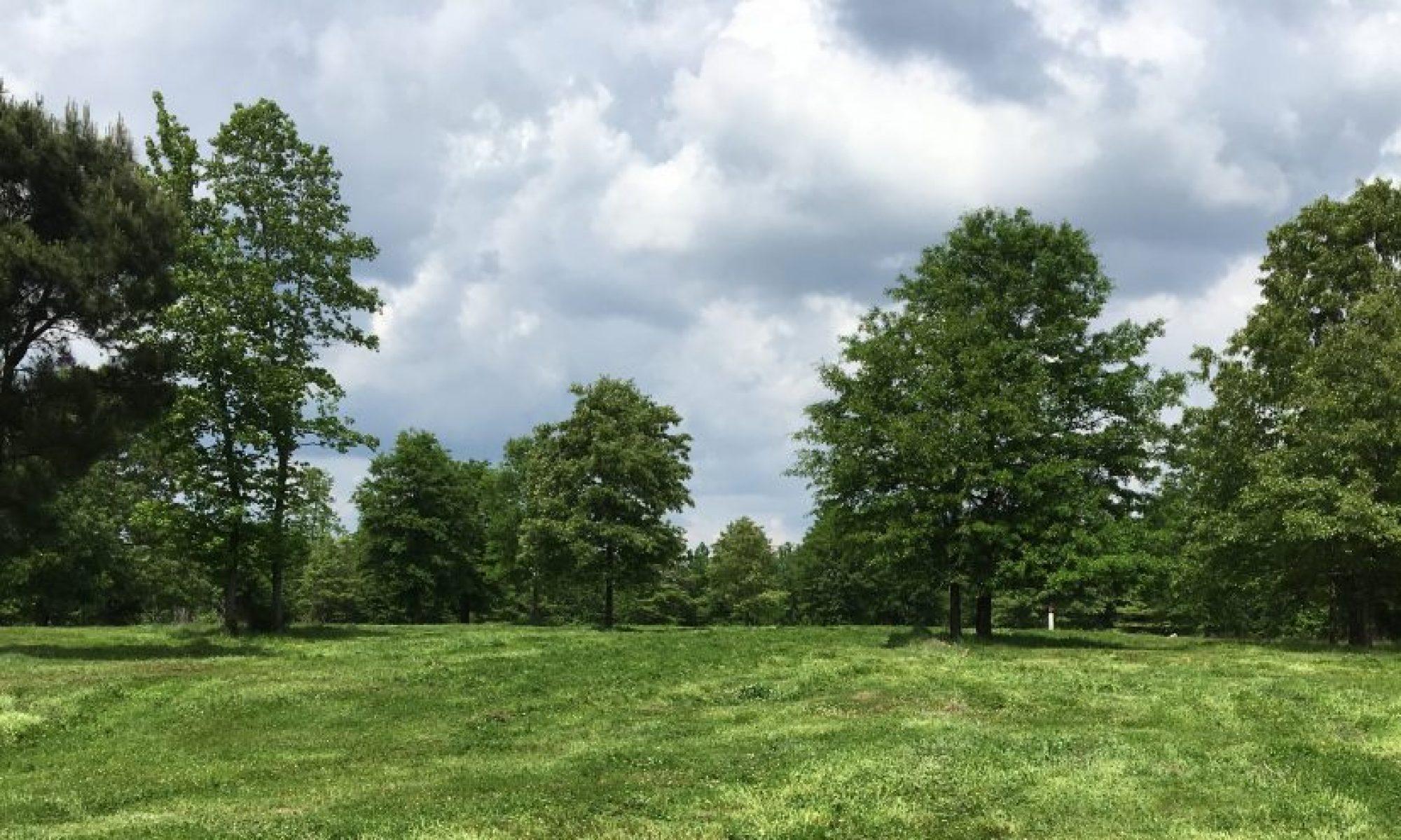 Homespun Acres